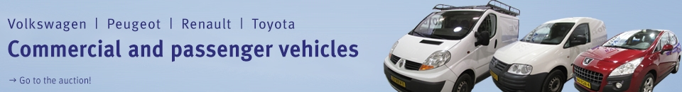 Fleet auction of company and passenger vehicles in Putten